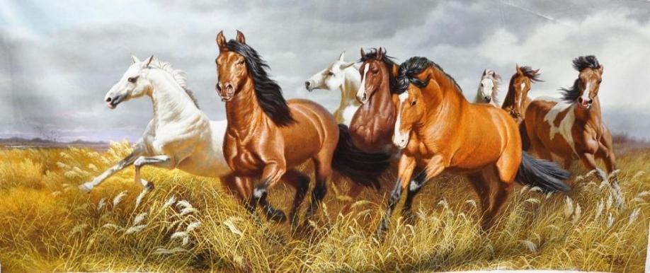 Масти лошадей на хакасском языке